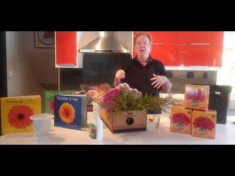 Online Floral Design Classes with Michael Gaffney