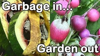 """Garbage In, Garden Out: Improve Soil Fertility with """"Garbage"""""""
