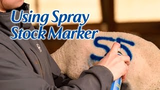 Using Spray Stock Marker