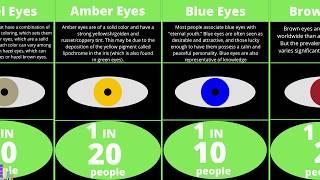 Probability Comparison: Human Eyes Color