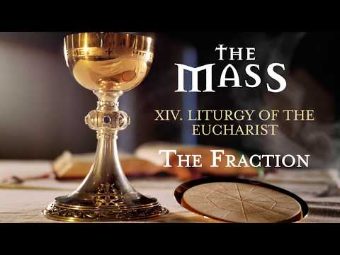 The Mass: 14 – Liturgy of the Eucharist – The Fraction