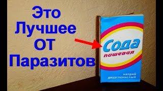 Как принимать соду от паразитов. Избавляемся от гельминтов пищевой содой - очищение кишечника