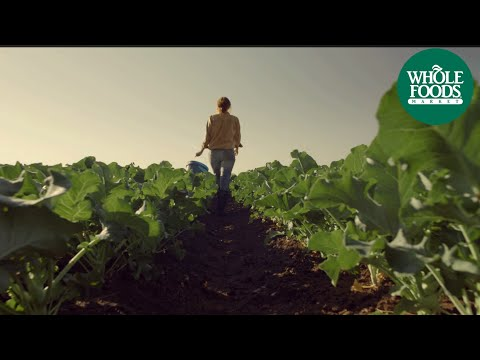Whole Foods Commercial (2013) (Television Commercial)