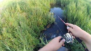 Ловля спиннингом хищников на малых реках