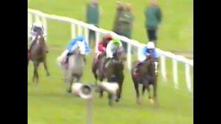 1999 - Epsom - Coronation Cup - Daylami