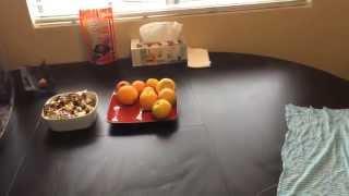 О разрешении на работу / Что у нас на завтрак, что мы тут едим ;)