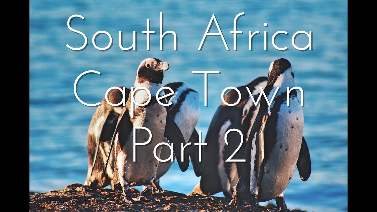 South Africa, Cape Town: Part 2 | Youtube By Harrison