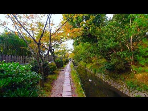 Kyoto walk - Philosopher's Walk (哲学の道) - 4K