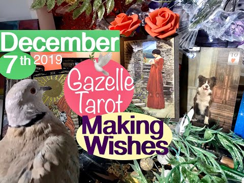 December 7 2019 Daily Tarot Reading 🎀Truly... Make a Wish🌟#tarot #tarotreading #tarotreader