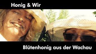 preview picture of video 'Honig ist gesund - Eröffnung Honigwerkstatt in Krems'