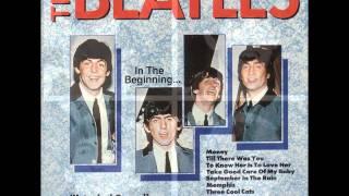 The Beatles Octopus' Garden Autotuned!