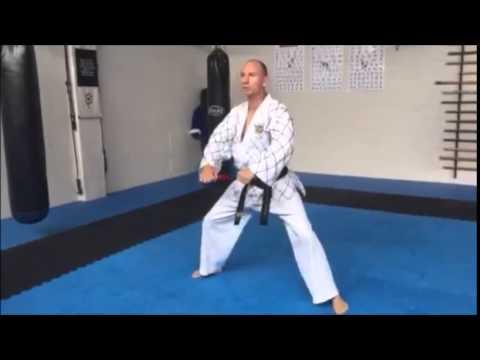 <h3>White Belt Pattern 1</h3>