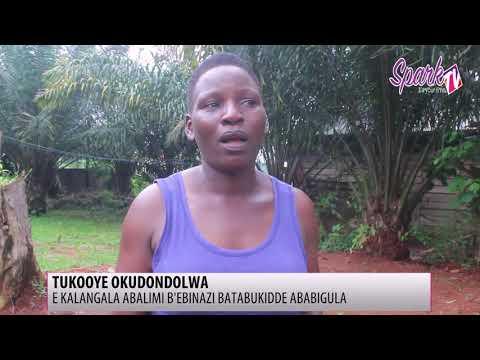 Abalimi b'ebinazzi basabye gavt ebongere kampuni ezibigula