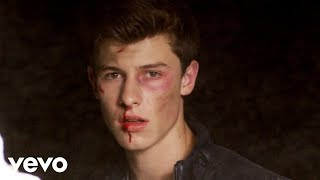 Stitches - Shawn Mendes  (Video)