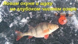 Зимняя рыбалка на озере глубокое
