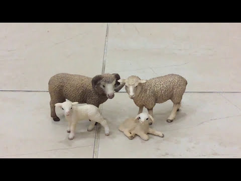 SHEEP FAMILY - Schleich FarmLife