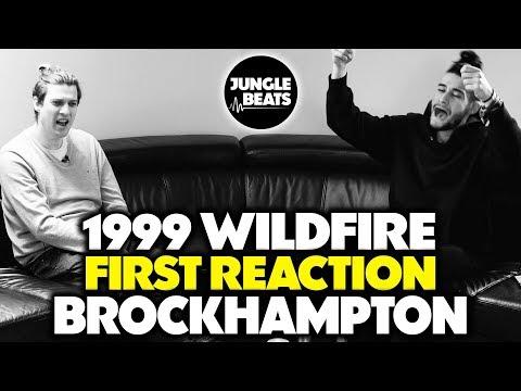 BROCKHAMPTON - 1999 WILDFIRE REACTION/REVIEW (Jungle Beats)