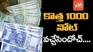 కొత్త 1000 నోట్ ఇదేనా! | New 1000 Note is Viral Now | 1000 Note is Back |  YOYO TV Channel