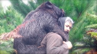 preview picture of video 'Hunting wild boar (hog) in New Zealand part 4'