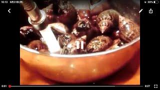 《ばい貝(ベイ貝、ビヤ貝)の含め煮》・・・・大和の 和の料理《含め煮》