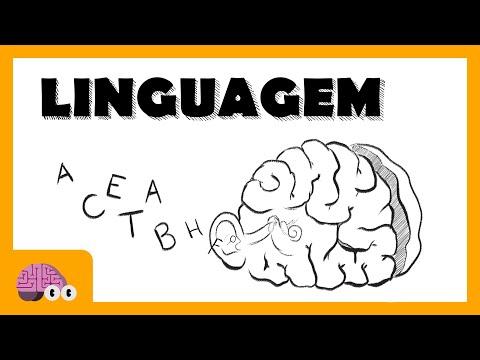 O que é linguagem e como a adquirimos?