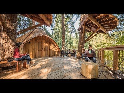 (ВИДЕО) Microsoft изгради куќички на дрво за да ја разбуди креативноста кај вработените