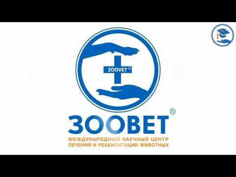 Купить очки для зрения в интернет магазине челябинск