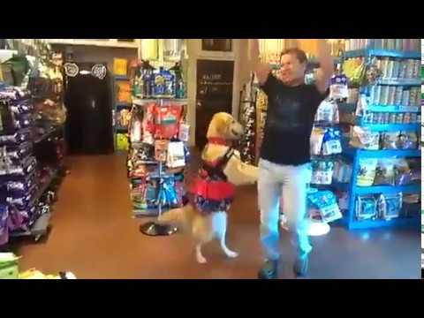 Anteprima Video Cane che danza !!! Spettacolo