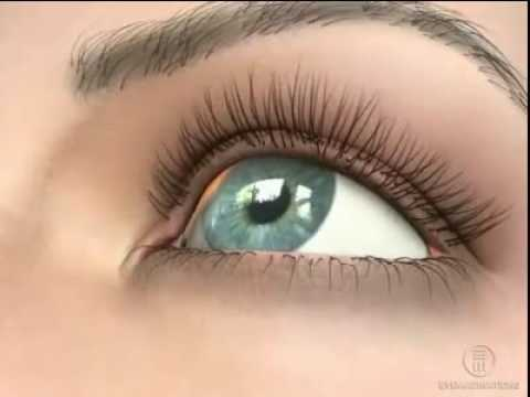 Картинки для глаз при близорукости