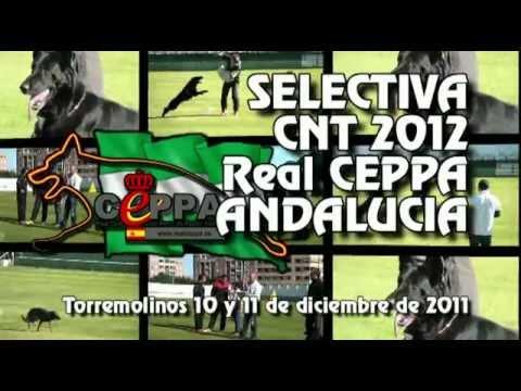 Preview video Selectiva para el Campeonato de España