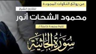سورة الجاثية كاملة مع الآيات   القارئ الشيخ محمود الشحات أنور تسجيل أستوديو
