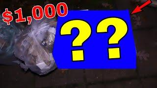 AMAZING! $1,000 Dollars Worth!! Dumpster Dive Night #597