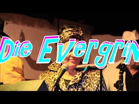 Die Evergrins - Musikalische Zeitreise mit Deutschen Schlagern und Evergreens a video preview