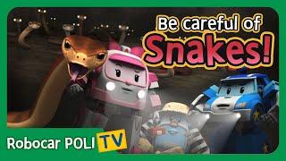 Be careful of Sankes! | Robocar Poli Clips