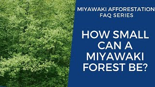 How Small Can A Miyawaki Forest be?