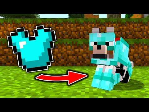 Wie WÖLFE RÜSTUNGEN in Minecraft TRAGEN können!