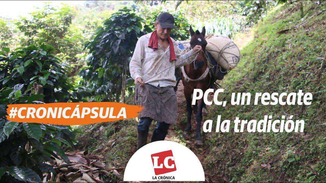 #Cronicapsula |  PCC, un rescate a la tradición