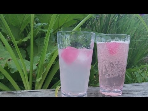 Video Rhubarb Juice Recipe - delicious easy summer drink - sugar free - paleo primal