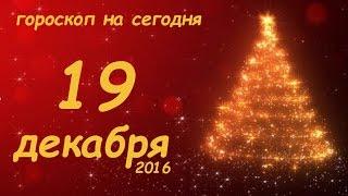 Гороскоп на сегодня 19 декабря 2016 понедельник