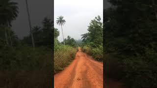 Motorcycle Ride From Bossou To Nzerekore, Guinea