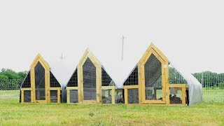 The Chicken Tractor Army