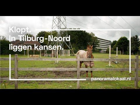 Mozaïek Tilburg-Noord