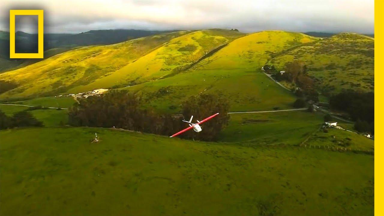 Life in Flight | Chasing Genius | National Geographic thumbnail