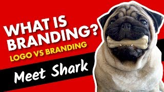 What Is Branding, Brand & Brand Identity? Logo Vs Brand, Graphic Design In Hindi