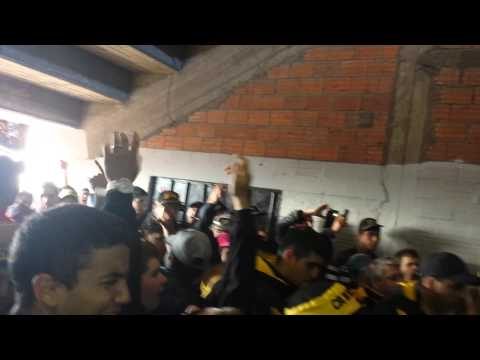 """""""La previa peñarol vs cerro largo"""" Barra: Barra Amsterdam • Club: Peñarol"""
