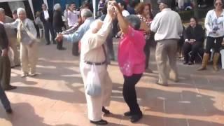 Kortina- Bzum-bzum breke-keke - dancing