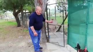 https://www.youtube.com/embed/Vg1BtWsbvuU