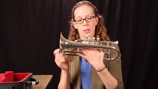 3a) How to Hold a Cornet