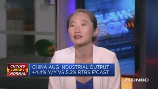 Trade war negotiations could drag on for years, economist says | Squawk Box Europe
