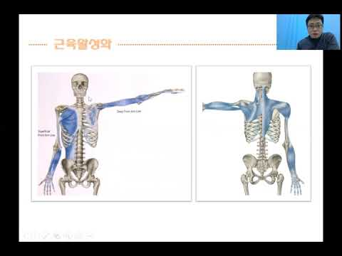 [선수트레이닝] PART 2 경기력 향상을 위한 MOVEMENT EXERCISE(움직임 개선 훈련)